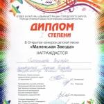 Участие в открытом конкурсе детской песни Маленькая звезда  (12)