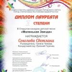 Участие в открытом конкурсе детской песни Маленькая звезда  (6)