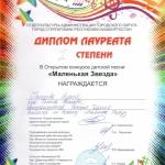 Участие в открытом конкурсе детской песни Маленькая звезда  (8)